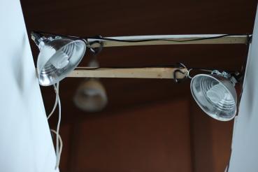 Sculpture Studio Lights